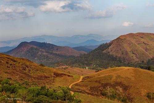 A Kerala Mountain Landscape