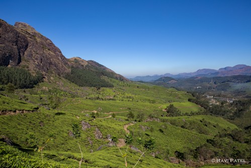 Mountains of Munnar