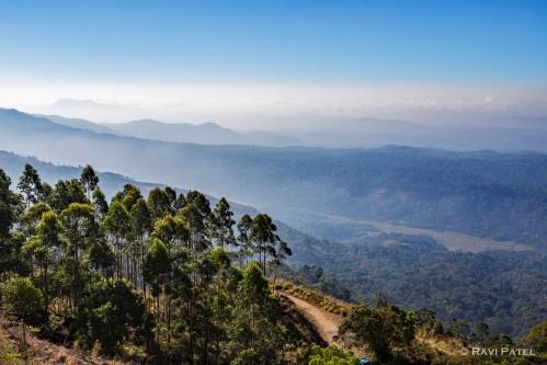 Blue Ridges of Kerala