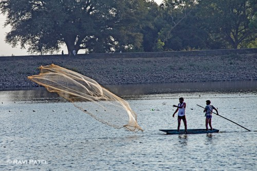 Casting Their Fishing Nets