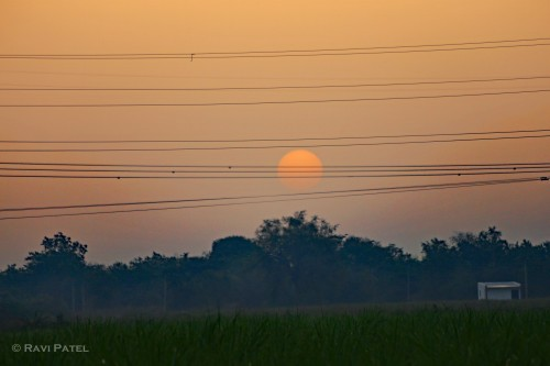 Sunrise between the Wires