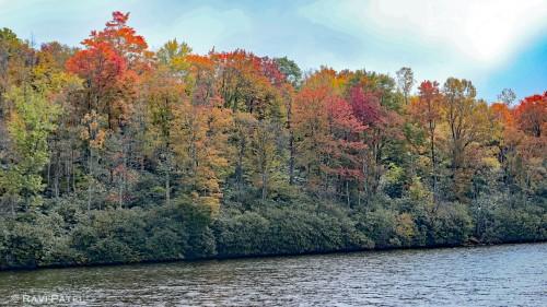 A Fall Canvas