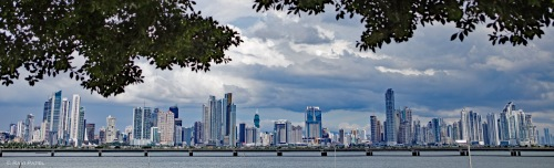 Panama City Under the Tree