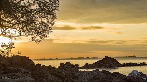 Ships Lined-up at Sunrise