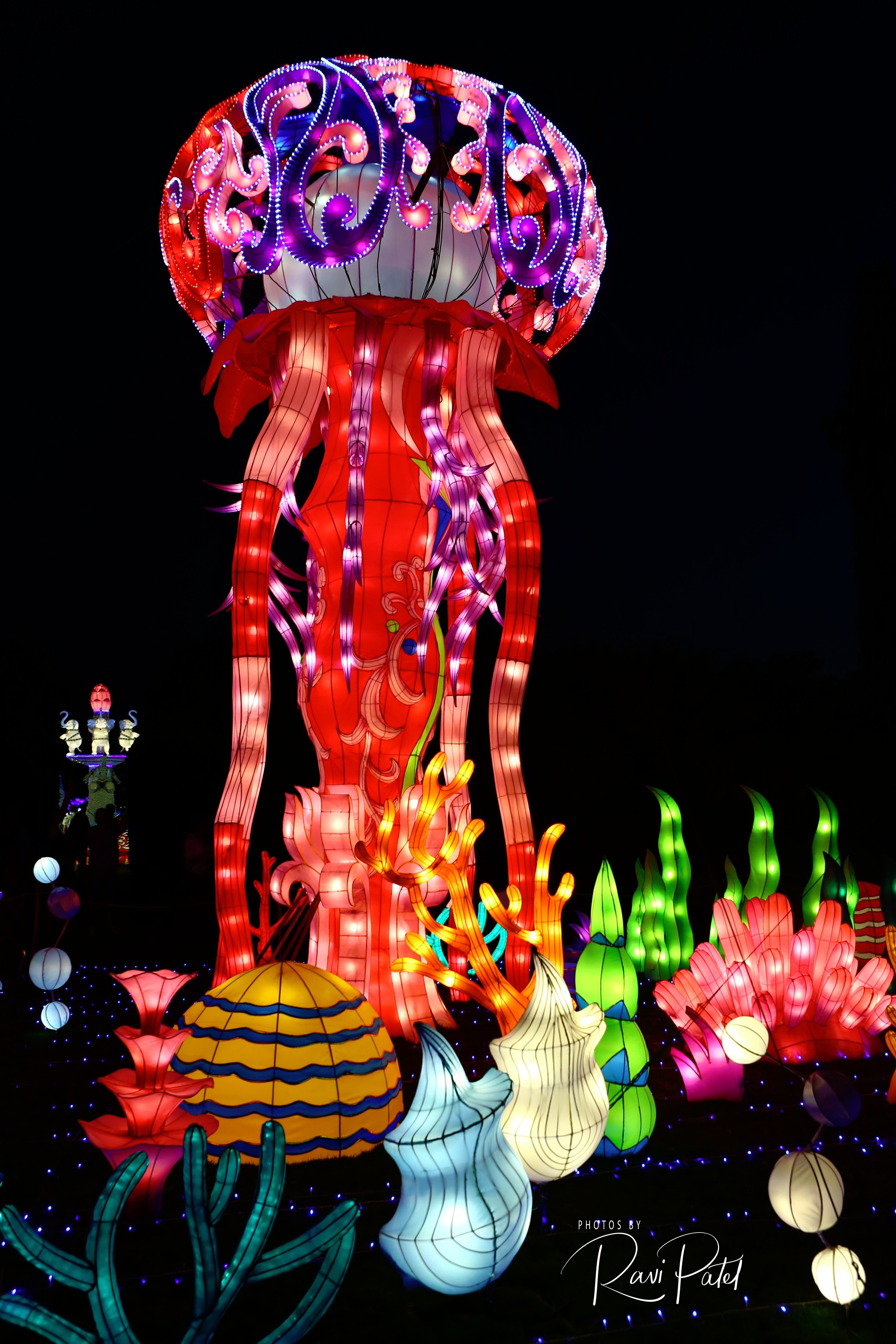 Chinese Lantern Festival – Colorful Jelly Fish | Photos by Ravi